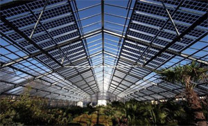 solarverde planung und betrieb von energieanlagen aus sonnenlicht und wind auf sardinien. Black Bedroom Furniture Sets. Home Design Ideas